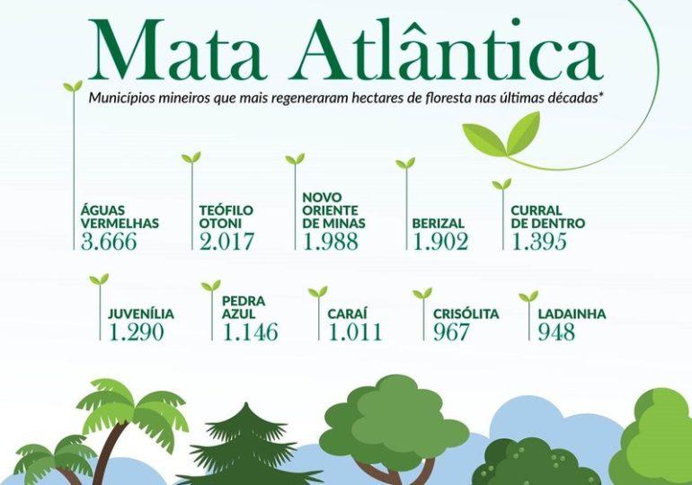 Minas Gerais avança na conservação e regeneração do meio ambiente
