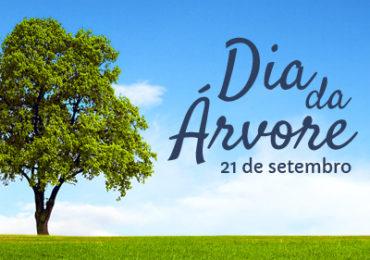 IEF comemora Dia da Árvore por toda Minas Gerais