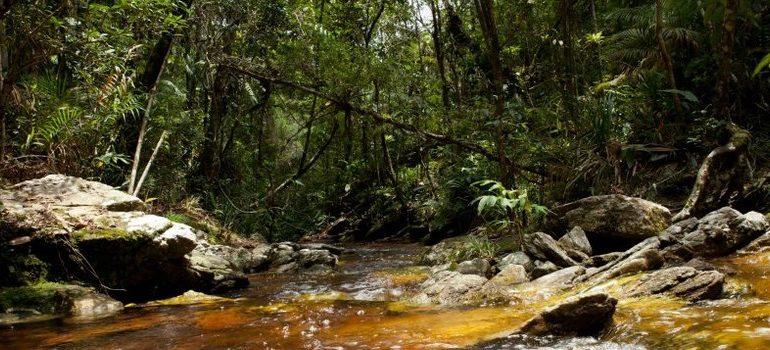 Criação do Parque Estadual Serra Negra é tema de audiências públicas