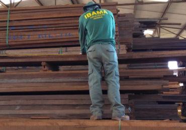 Ibama identifica fraudes em 21 madeireiras de MG