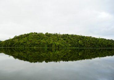 Dia Mundial das Áreas Úmidas chama atenção para crescimento urbano sustentável