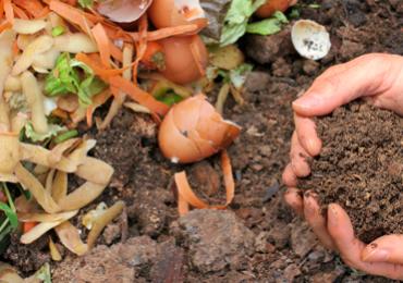 Compostagem caseira: uma prática simples que ajuda a transformar o meio ambiente