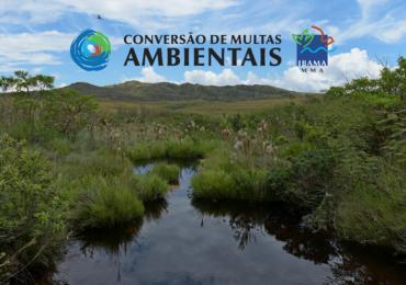 Ibama inicia seleção pública de projetos para Conversão de Multas Ambientais