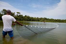 Governo de Minas soma esforços para agilizar o licenciamento ambiental dos piscicultores