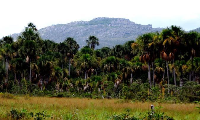 Minas Gerais ganhará unidade de conservação