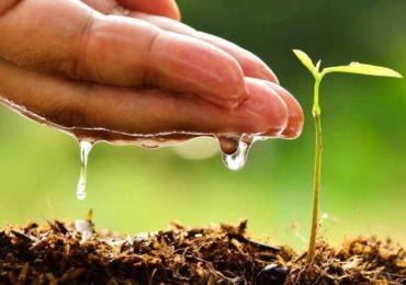 Inscrições para o Prêmio Boas Práticas Ambientais se encerram em 13 de maio