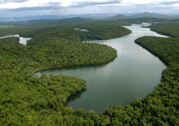 Governo de Minas retoma Núcleos de Gestão Ambiental