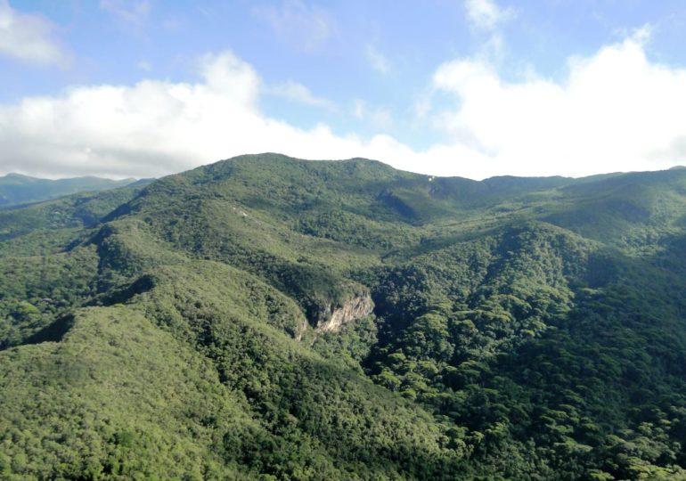 Abaixo assinado a favor da criação do Parque Estadual da Serra Negra da Mantiqueira movimenta as redes sociais nesta semana