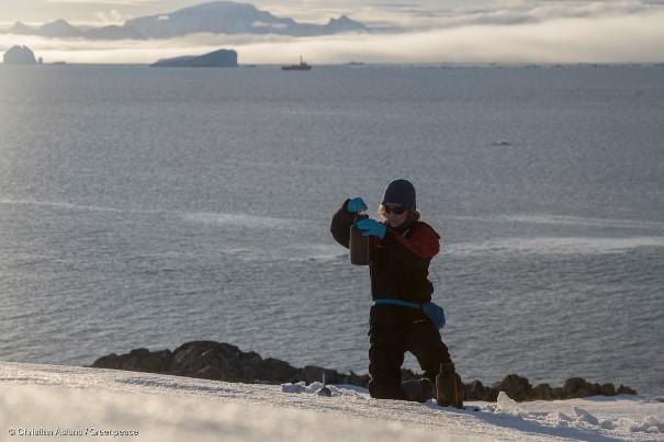 Poluição plástica na Antártida