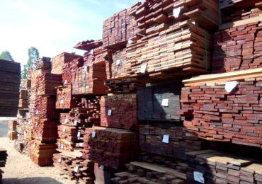 Ibama realiza maior apreensão de madeira ilegal da Amazônia em SP