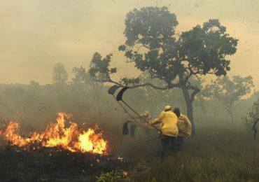 ICMBio se prepara para a temporada de fogo