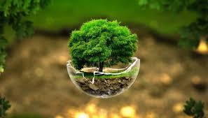 MPMG apresenta projeto sobre gestão ambiental municipal na I Mostra de Projetos do Ministério Público