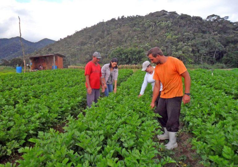 Representantes de Brasil e Guatemala discutem políticas públicas de governança da terra