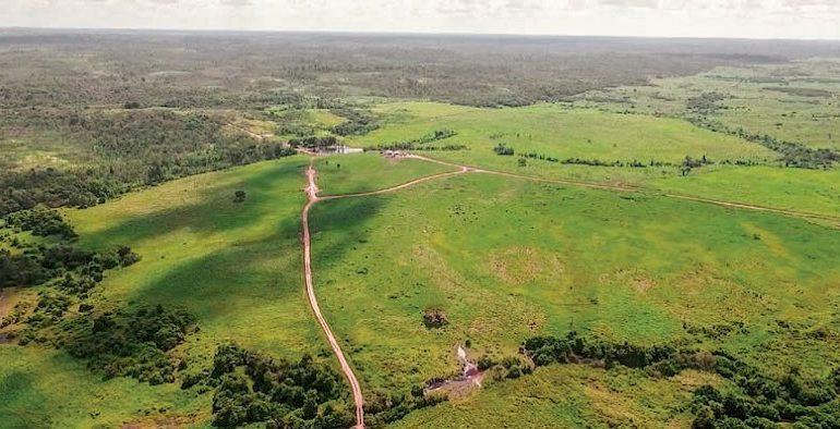 Amazônia em transe