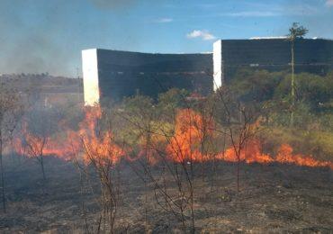 Bombeiros registraram mais de 4 mil queimadas em Minas em junho deste ano