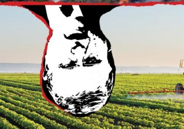 O projeto venenoso do Brasil
