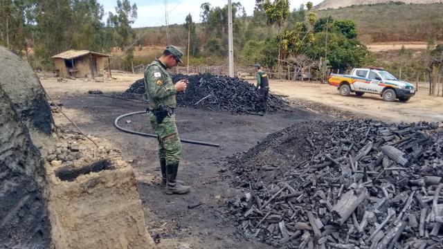 Operação aponta desmatamento de cerca de 1,2 mil hectares de mata atlântica em Minas Gerais