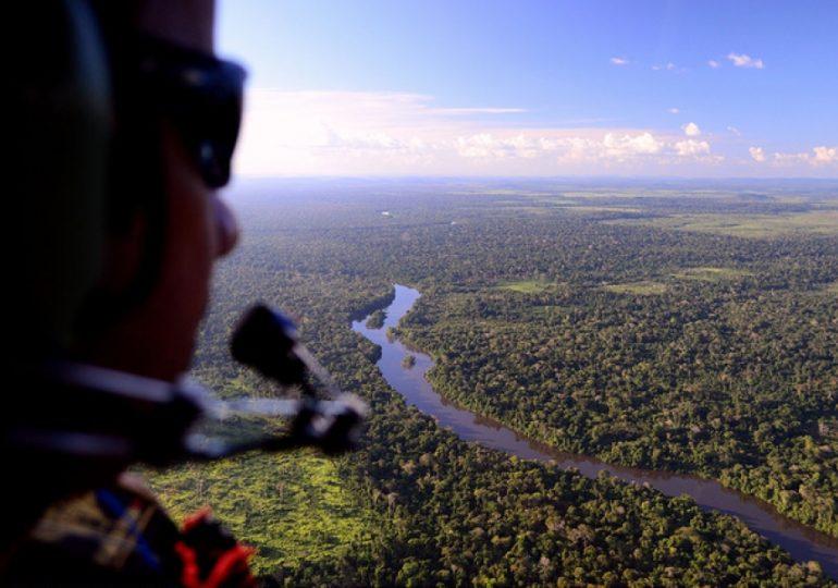 Governo diferenciará desmatamento legal do ilegal