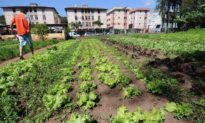 Minas Gerais lança projeto de agroecologia
