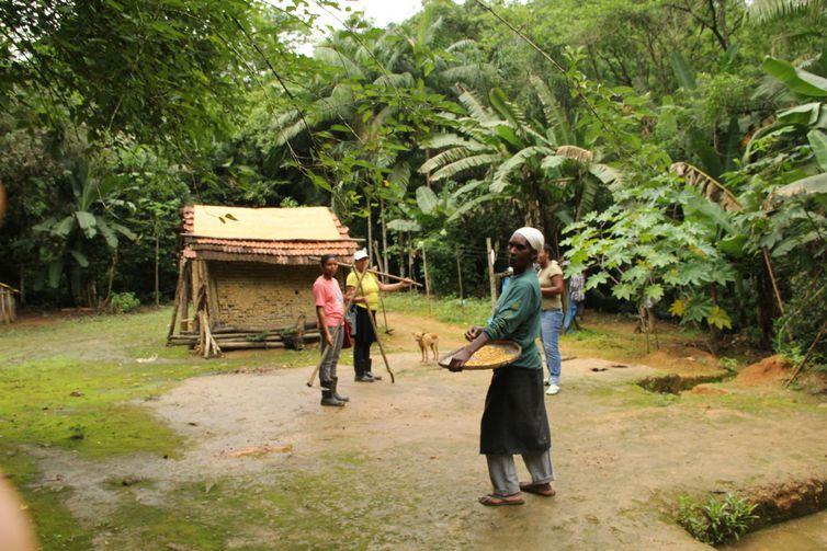 Plantio tradicional de quilombolas recebe título de patrimônio do país