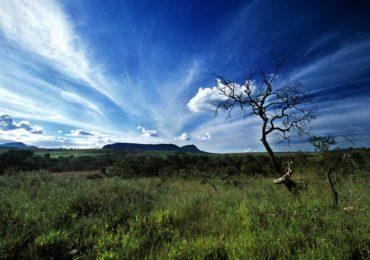 Brasil terá 18 mil quilômetros de trilhas naturais que vão cruzar o país