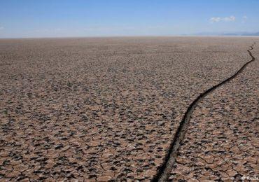 Cientistas franceses pedem socorro ao meio ambiente