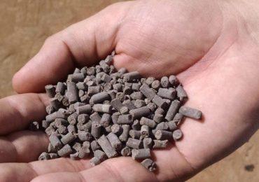 Cientistas da UFU produzem fertilizante com lodo de esgoto