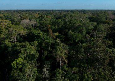 Em menos de uma hora, deputados de Rondônia acabam com mais de 5 bilhões de m2 de áreas protegidas