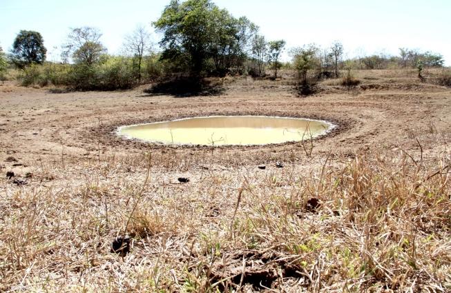 Seca rigorosa leva 107 cidades mineiras a decretarem situação de emergência