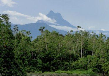 Estudo mostra riscos de PL sobre criação de unidades de conservação