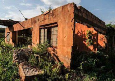 Natureza luta para ressurgir da lama três anos após tragédia de Mariana