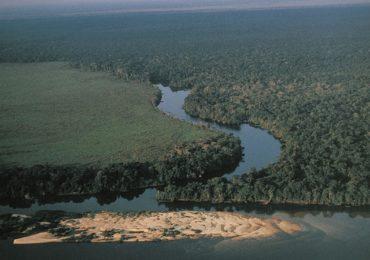 Desmatamento na Amazônia cresce 13,7% entre 2017 e 2018, dizem ministérios