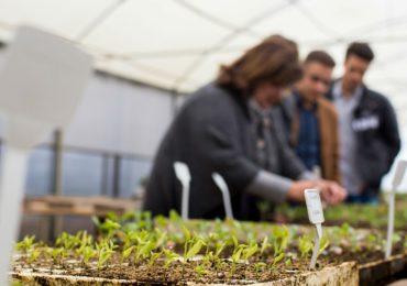 Meio ambiente, economia e produção de alimentos se encontram na Agronomia