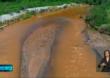 Trabalho de reflorestamento da Bacia do Rio Doce continua depois de 3 anos do desastre