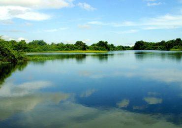 CMA vota preservação obrigatória da biodiversidade no período de cheias dos rios