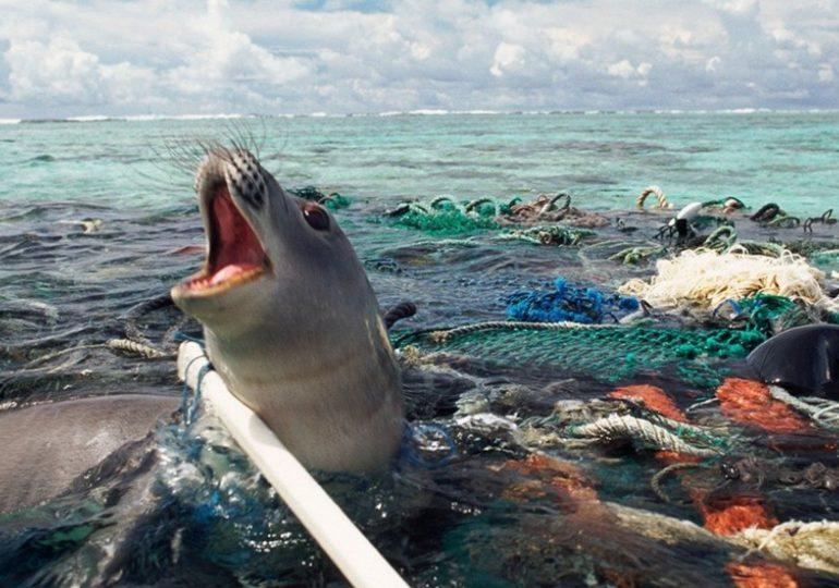 MMA defende plano contra lixo no mar