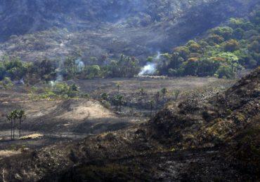 Ministério do Meio Ambiente perde órgãos de água, clima e combate a desmatamento