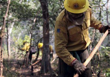 PL que institui política de gestão do fogo é enviado ao Congresso