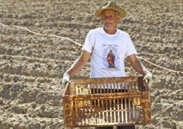Rompimento da barragem prejudica 180 famílias que dependiam da agricultura
