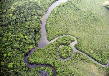Brasil recebe US$ 96 milhões do Fundo Verde