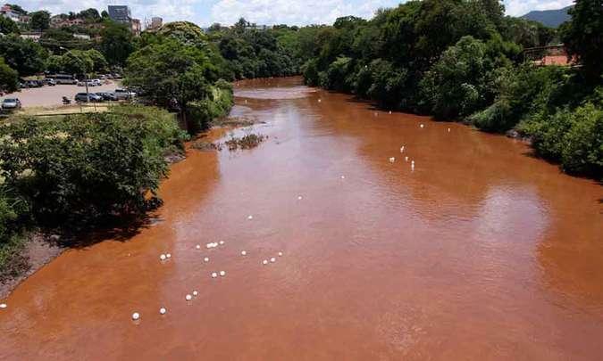 Lama de barragem matou o Rio Paraopeba, conclui estudo da SOS Mata Atlântica