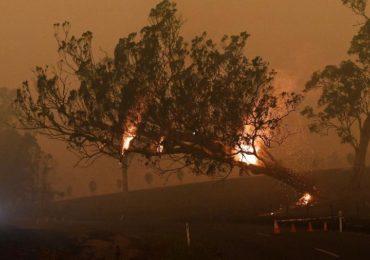 Por que os incêndios na Amazônia preocupam mais do que os da Austrália
