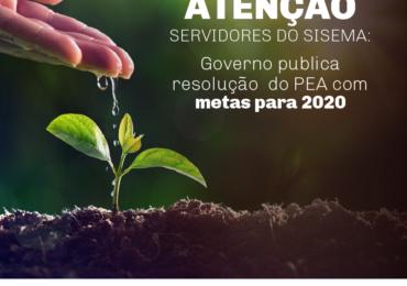 Governo publica resolução do PEA com metas para 2020