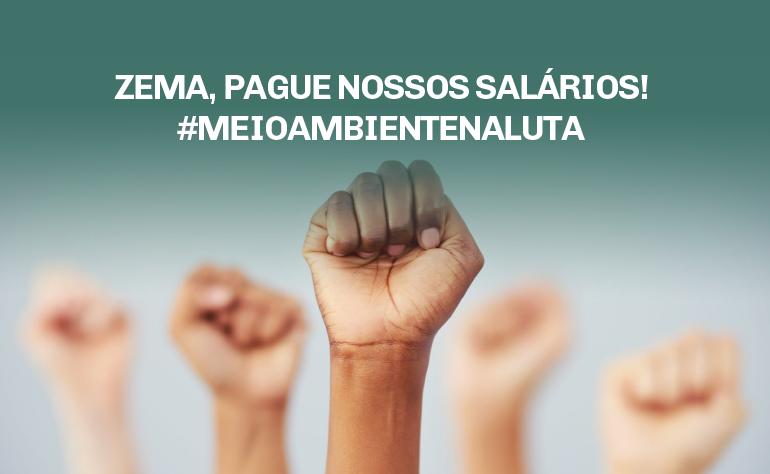 Zema, pague nossos salários! #meioambientenaluta