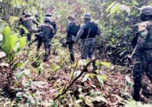 Fiscais acusam militares de atrapalhar combate ao desmatamento na Amazônia