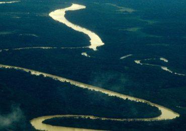 Brasil registrou 24 mortes de ativistas ambientais em 2019