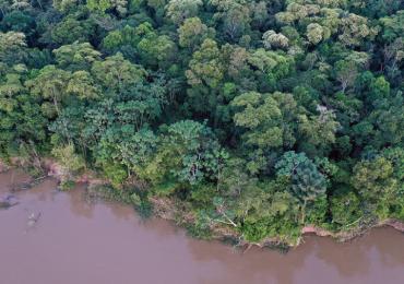 Cientistas afirmam: lei é insuficiente para proteger os rios do país