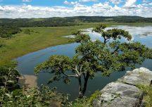 Parques estaduais só vão reabrir na Onda Verde do Minas Consciente