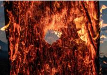 Governo divulga informação falsa de que queimada no Brasil é a menor em 18 anos