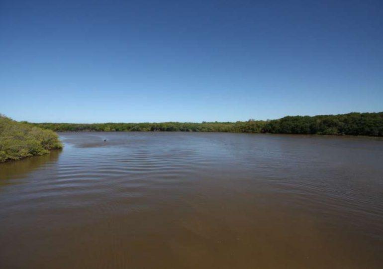 Parlamentares vão à Justiça para impedir votação que flexibiliza regra ambiental